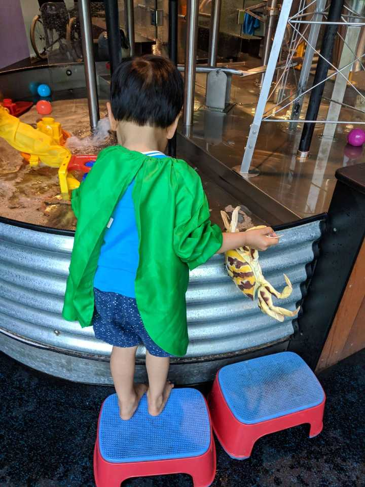 Child playing at Mini-Q Questacon