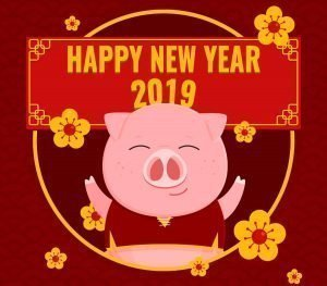 Chinese New Year 2019 image of Pig